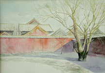 wangxiaoson tree in wall.JPG (12724 �ֽ�)